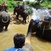 Reisen mit den Kids nach Thailand